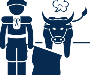 Bullfights & Ex-Wives